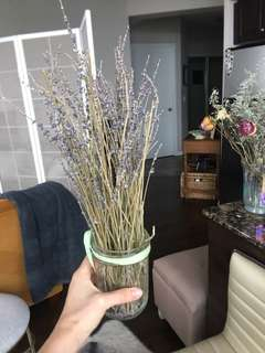 Dry lavender Jar