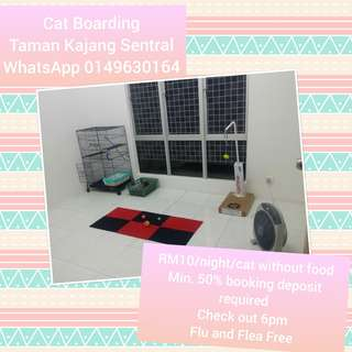 Kajang Home Based Cat Boarding