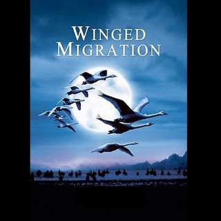 [Rent-A-Movie] WINGED MIGRATION (2001)