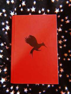 Catching Fire hardbound