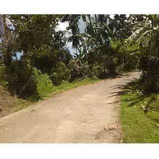 Farm Lot for Sale in Laguna
