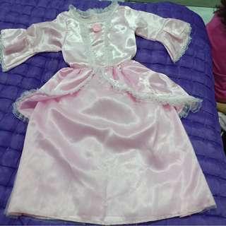 Costume Kostum Cinderella