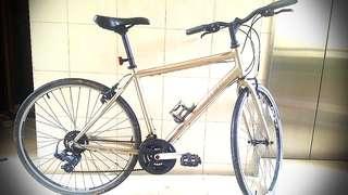 Hybrid TREK Road bike - steel frame