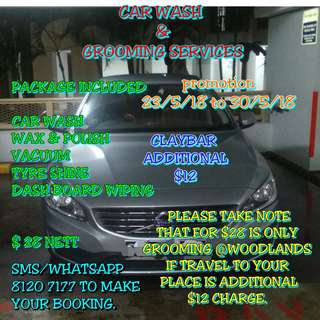 car wash and grooming service