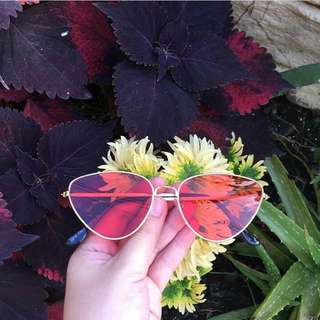 Lily sunnies (Red) Sunglasses