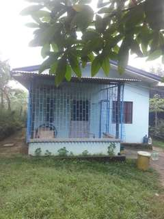 House and lot 350sqm san pedro laguna. Bayanbayanan