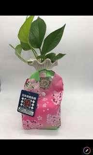 🚚 日本🇯🇵環保購物袋🛍️