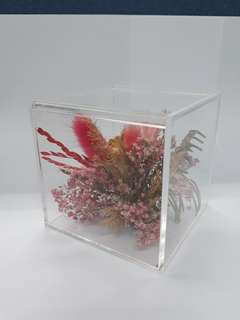 Natural Preserved Rose dried flowers in a see thru box.