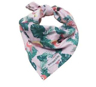 Bandanas for dogs and cats