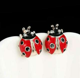 Anting kumbang