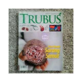 Majalah Trubus - Riset Ilmiah Sarang Semut
