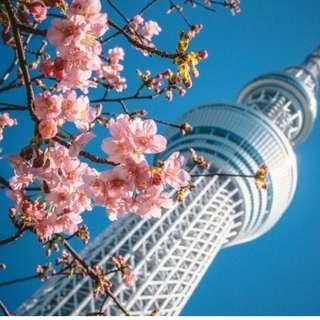 AMI Travel | 6D5N Visit Tokyo, Mt Fuji, Osaka & Kyoto, Japan