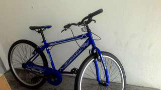NEW Bicycle Gainway to let go (nego)