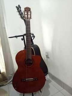 Gitar Cordoba