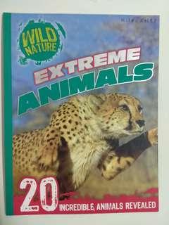 Miles Kelly Wide Adventure series