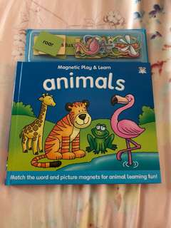 BN magnetic play and learn - animals