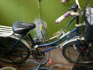 Sepeda cewek