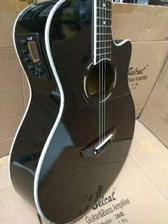 Gitar Yamaha APX 500II Akustik Listrik