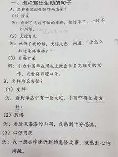 P3 Chinese Compo guide. picture, example guide, model compo.