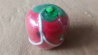 BN threading apple worm wooden toy
