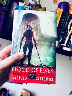 The Witcher 1: Blood of Elves