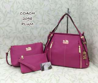 Coach 3 in 1 Bags Plum Color