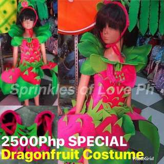 Nutrition Month Costumes SPECIAL/ Fruit and vegetable Costumes