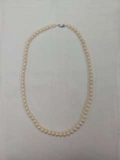 Fresh Water Pearl Necklace with Silver Clasp