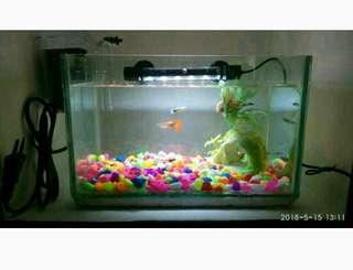 Aquarium mini full set