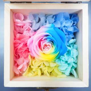 Preserved Rainbow Rose in Wooden Box