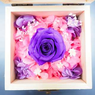 Preserved Purple Rose Wooden Box