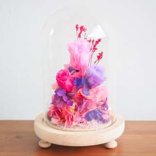 Pink Preserved Rose Dome - Fuchsia