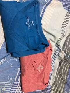 Giordano V-Neck Shirt