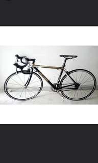 Polygon helios 300 road bike