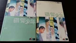 林海峰 獨臂少年 小說