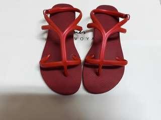真品 havaianas鞋 巴西鞋 巴西涼鞋