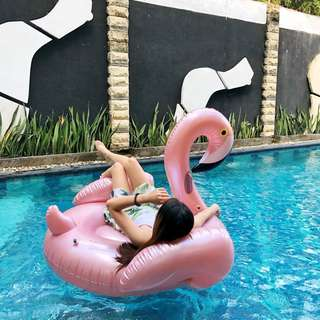 Flamingo Giant Float Rental