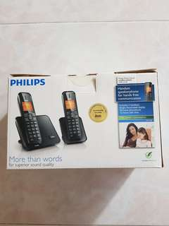 Philips Perfect Sound Cordless