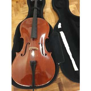 4/4 Eurostring Handcrafted Advanced Intermediate Cello Model 300