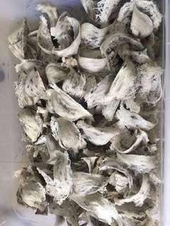 越南頂級燕窩