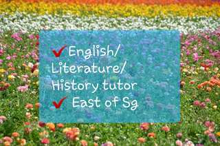English / Literature/ History tutor