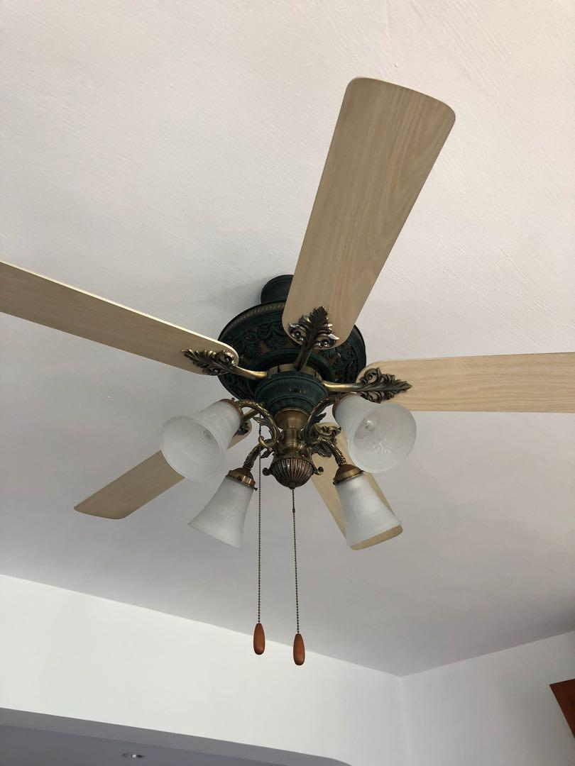 Ceiling Fans And Lights Furniture