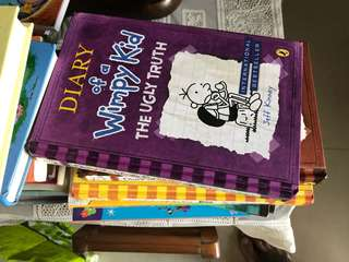 33 storybooks eg. Diary Of A Wimpy Kid