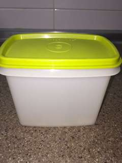 Tupperware Container approximately 900 ml