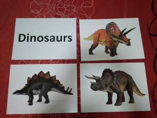 Dinosaurs -  BN Glenn Doman Encyclopedic flashcards