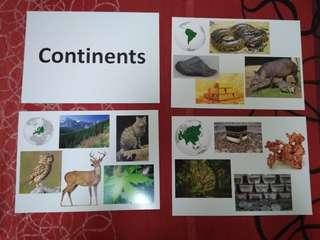 Continents - BN Glenn Doman Encyclopedic flashcards