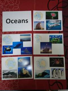 Oceans - BN Glenn Doman Encyclopedic flashcards