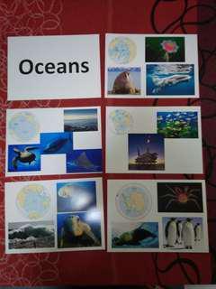 Oceans - BN Glenn Doman Encyclopedic flashcards