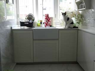 Kitchen Cabinet with Farmhouse Sink