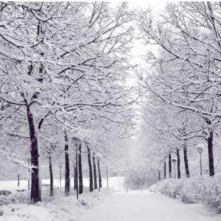 AMI Travel | 6H4M Korea Muslim Musim Sejuk